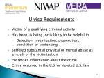 u visa requirements
