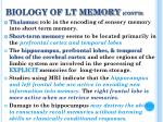 biology of lt memory cont d