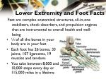 lower extremity and foot facts