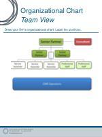 organizational chart team view