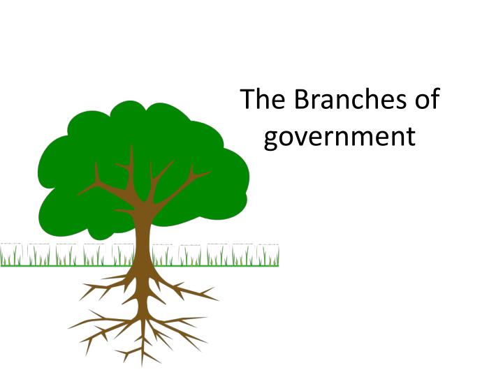 the branches of government n.
