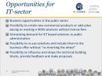 opportunities for it sector