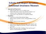 schutte self report inventory emotional awareness measure