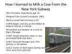 how i learned to milk a cow from the new york subway
