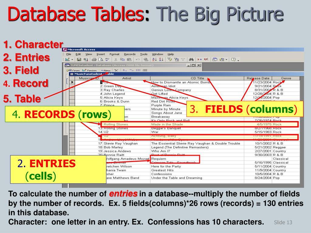 PPT - Database Fundamentals PowerPoint Presentation - ID:1655134
