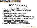 reo opportunity1
