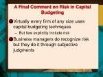 a final comment on risk in capital budgeting