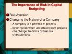 the importance of risk in capital budgeting1