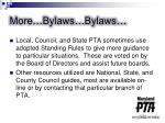 more bylaws bylaws