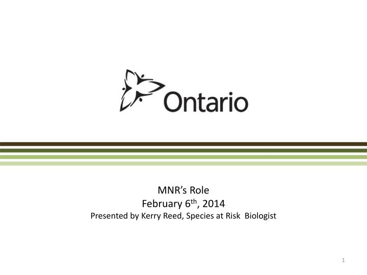 mnr s role february 6 th 2014 presented by kerry reed species at risk biologist n.