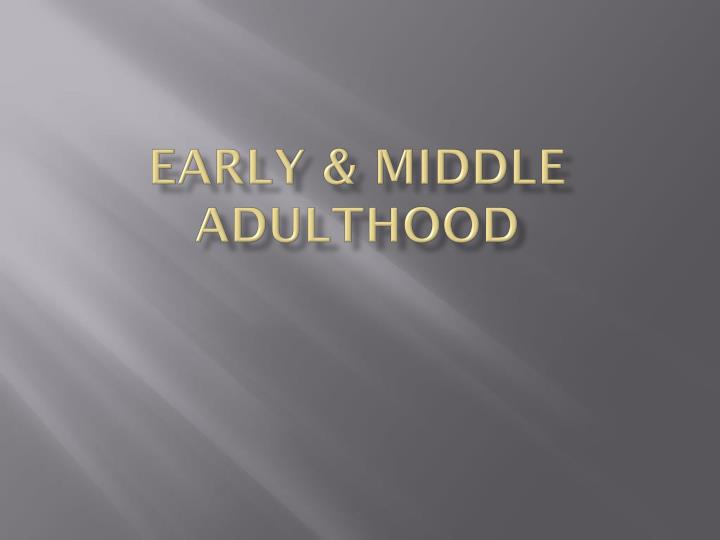early middle adulthood n.