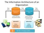 the information architecture of an organization