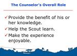 the counselor s overall role