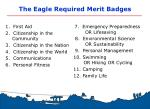the eagle required merit badges
