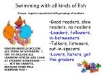 swimming with all kinds of fish groups begin to experiment with groupings of students