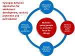 synergies between approaches for adolescent development survival protection and participation