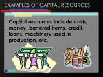 examples of capital resources
