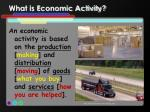 what is economic activity