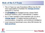 role of the l3 team