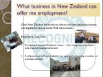 what business in new zealand can offer me employment