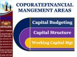 coporatefinancial mangement areas