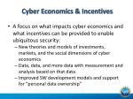 cyber economics incentives