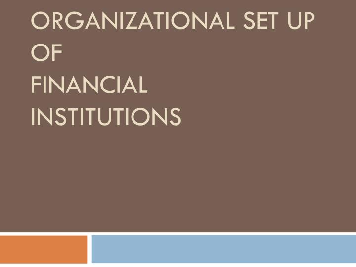 organizational set up of financial institutions n.