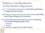 pathways to the baccalaureate via the florida college system