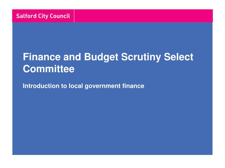 finance and budget scrutiny select committee introduction to local government finance n.