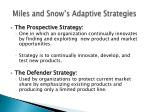 miles and snow s adaptive strategies