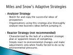 miles and snow s adaptive strategies1