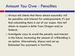 amount you owe penalties1