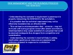 risk management and the business process the sow soo