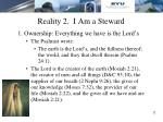 reality 2 i am a steward