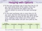 hedging with options1
