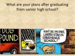 what are your plans after graduating from senior high school