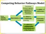competing behavior pathways model