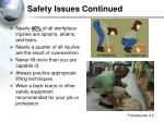 safety issues continued2