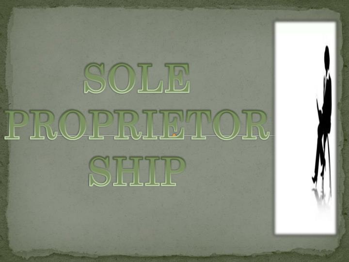 sole proprietorship n.