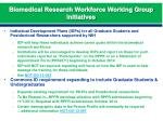 biomedical research workforce working group initiatives