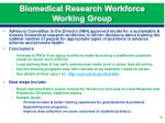 biomedical research workforce working group