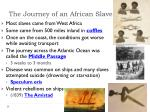 the journey of an african slave