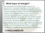 what type of merger2