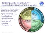 combining country risk and industry expertise to provide comprehensive analyses