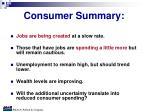 consumer summary