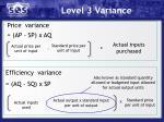 level 3 variance