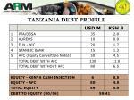 tanzania debt profile