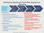 identifying significant fraud risk exposures planning