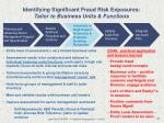 identifying significant fraud risk exposures tailor to business units functions