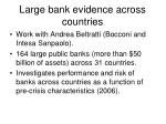 large bank evidence across countries